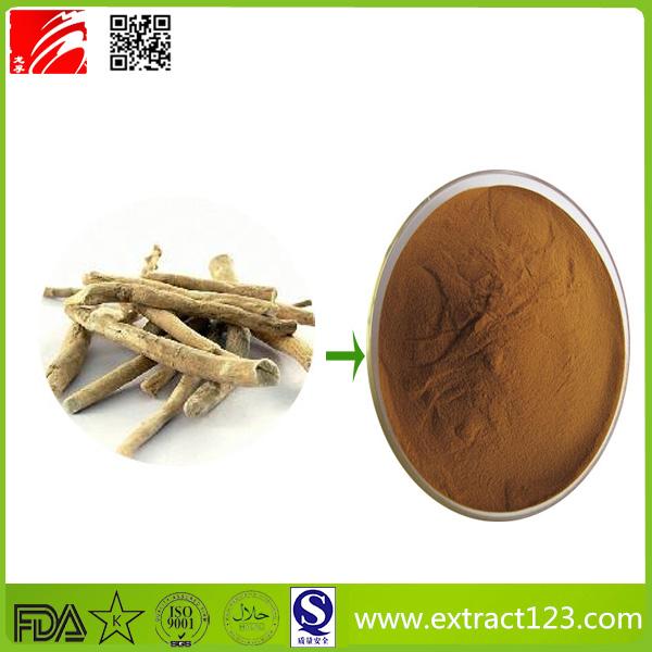 Factory Direct Supply Herbal Extract Gensing Extract with Ginsenosides