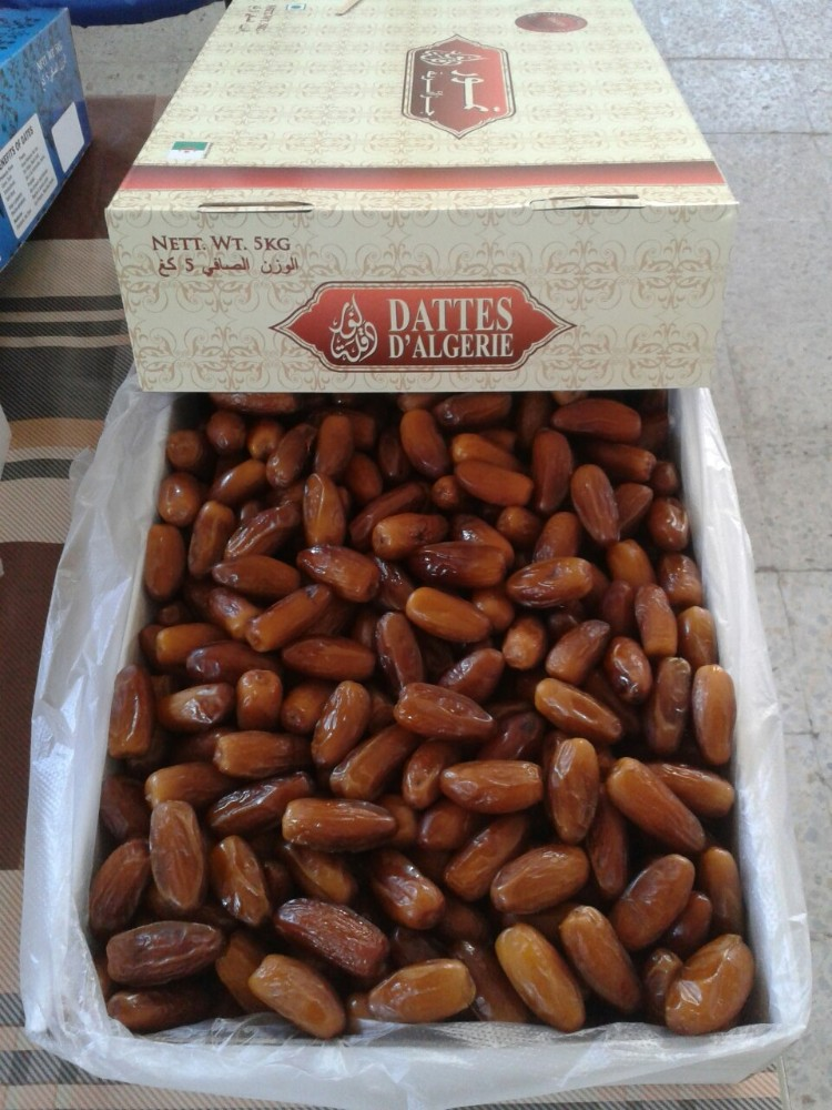 Dates Deglet Nour fresh from Algeria
