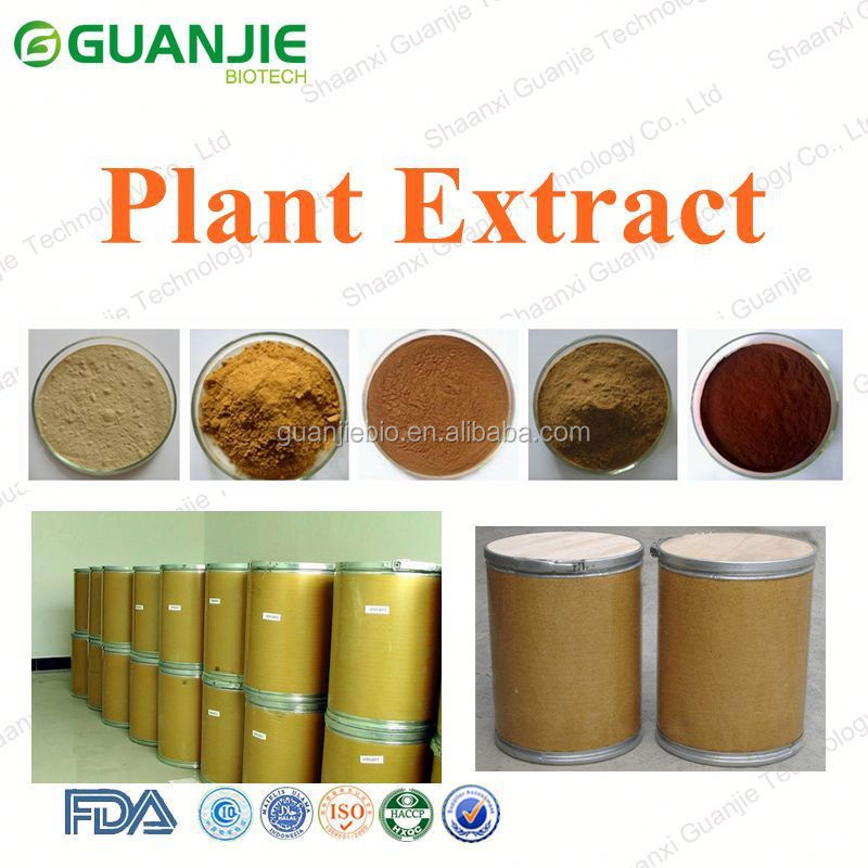 Natural High Quality walmart eugenol clove oil