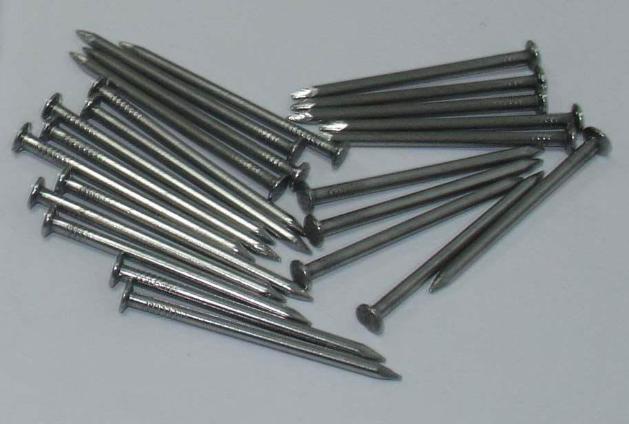 polished common nails