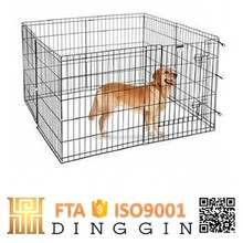 A group of animals dog playpen
