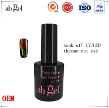 Private label discoloration cat eye gel nail polish