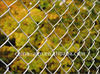 electro/hot dipped galvanized diamond Chain Link Fence electro/hot galvanized diamond Chain Link Fence