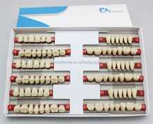 Full Mouth artificial teeth Low Price