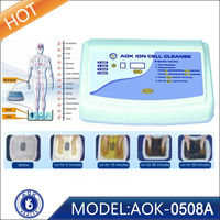 Christmas present bring health with certificates Ion Cell detox machine