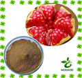 Iso factory supply 100% natural pomegranate extract with competitive price
