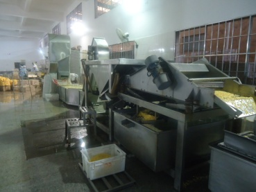 Canned Sweet Corn Processing