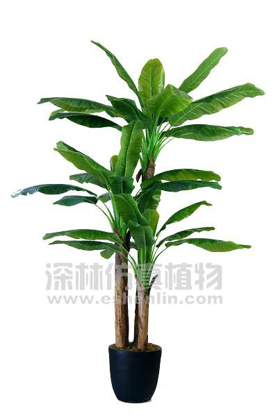 S91906-18 artificial large indoor bonsai banana tree products