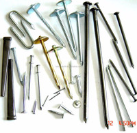Low price common iron nails from China factory