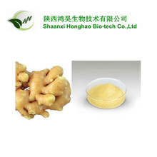 Instant water soluble dry ginger powder/organic ginger extract