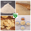 Iso HACCP A grade Dehydrated Garlic Granulated Powder 80-100 Mesh