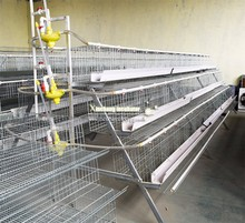 chicken cage 4 layers chicken cage poultry farming equipment