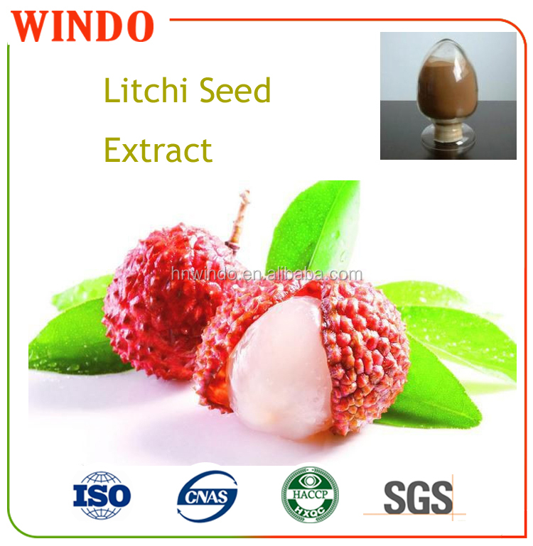 Pure Natural Dried Fine Litchi Seed Extract/Lychee Seed Extract Powder