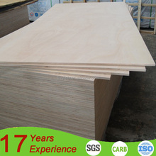 Cheap price eucalyptus main material furniture grade E1 glue 4x8 18mm Pine plywood