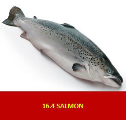 Salmon (Norway Origin)