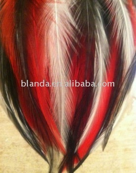 Grizzly Rooster Saddle Feathers Hair Extensions