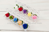 Wholesale Hand-made Natural Preserved Rose Flower In Glass