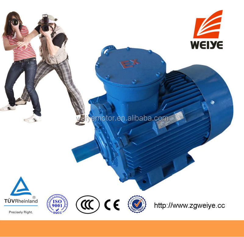Foot And Face Mounted AC 18.5KW Motors Electric