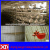 with automatic water system Galvanized Layer Pigeon Cages