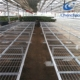 seedling planting machine greenhouse seedbed benches cultivation bench