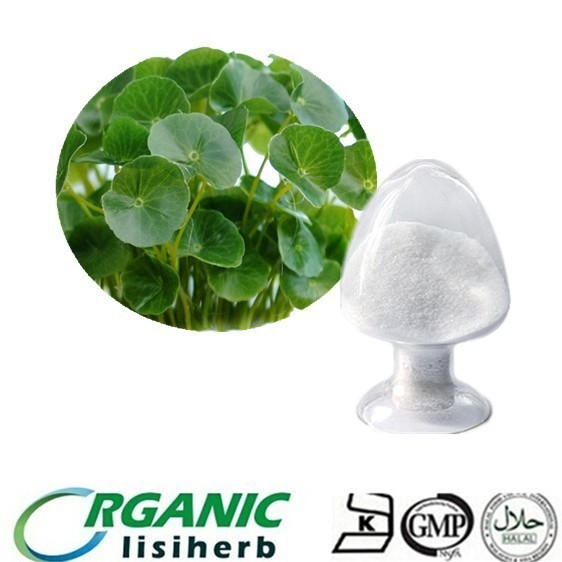 13 years factory supply high quality Centella Asiatica Selected Triterpenes Total Triterpenes