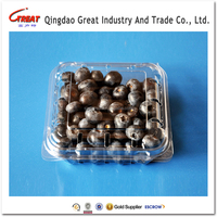 Disposable Plastic Packaging Container Fruit packaging tray Clear Clamshell for blueberry 125 Gram