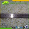 Factory Quick Frozen Food Frozen Onion Dice Manufacture