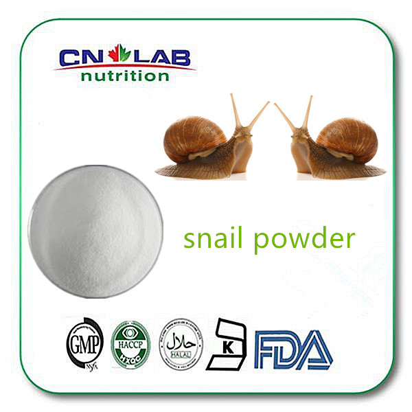 Snail extract powder from snail secretion for skin whitening