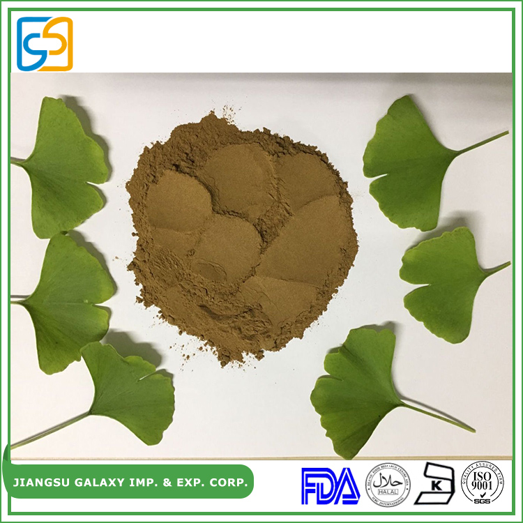 Newest technology anti-cardiovascular biloba ginkgo extract