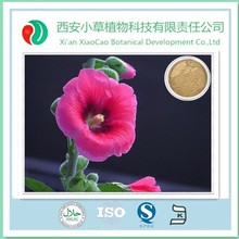 Hot Selling 100% Natural Althaea rosea (Linn.) Cavan./Hollyhock Powder