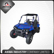 Adults Used 5KW Powerful Electric UTV Made In China