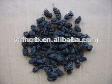 dried and natural mulberry fruit for beverage