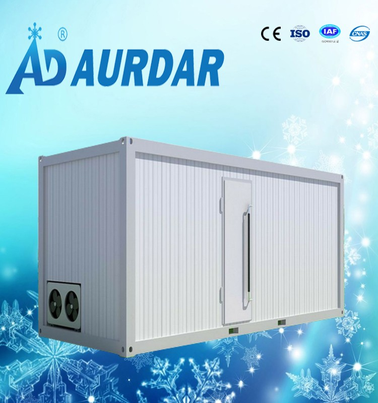 4HP 20FT container solar powered cold storage room