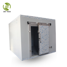 Air cooled cold room for wholesales, freezer storage for meat
