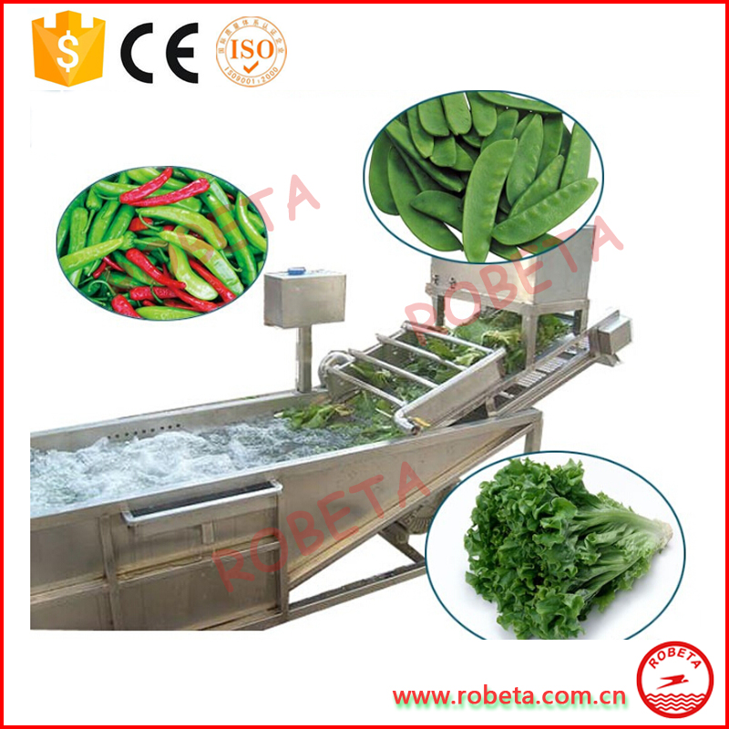 Industrial Leafy Vegetable Fruit Date Washing machine/cleaning machine price