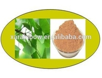 ISO factory supply natural 100% good quality natural ginkgo biloba p.e with high quality