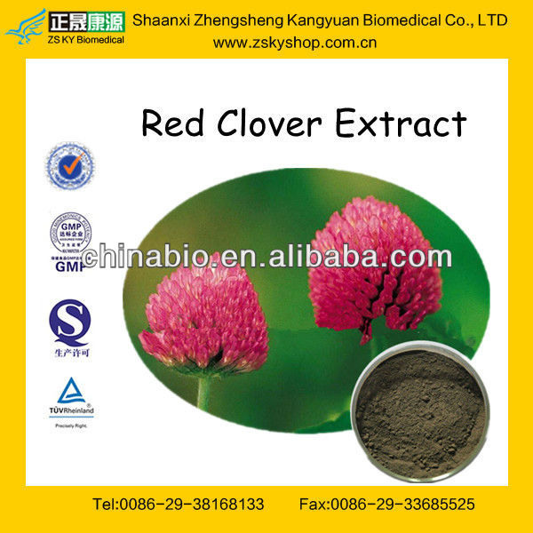 GMP Manufacturer Supply 100%Natural Red Clover Powder Extract