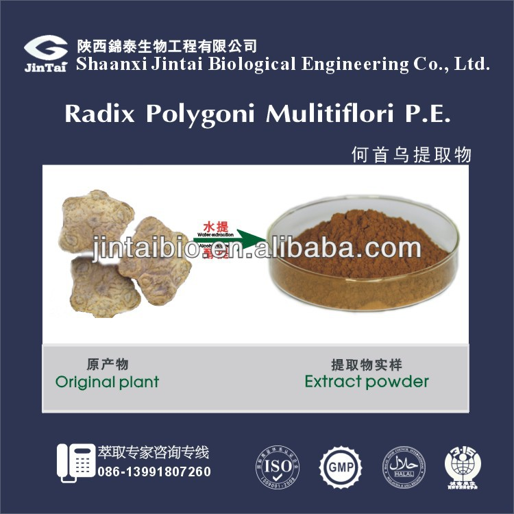 10:1 high quality polygonum multiflorum thunb extract