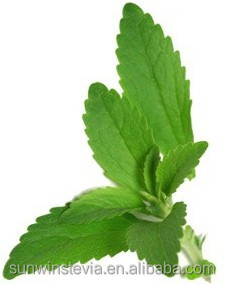 Debittered Stevia Enzymatically Modified Stevia 95%