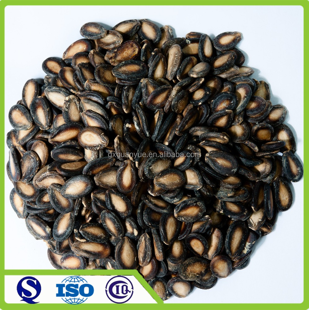 Chinses 2016new crop black water melon seeds
