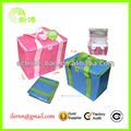High Quality Frozen Food Insulated outdoor 6 cans cooler bag