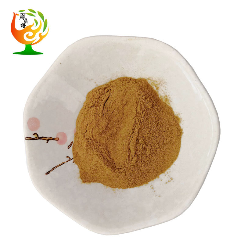 Natural European Hop Flower Extract / Humulus Lupulus Extract 5% xanthohumol <strong>powder</strong> 6754-58-1