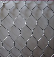 chicken coop hexagonal wire mesh ,pvc coated hexagonal wire mesh