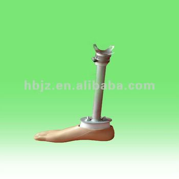 Lower Artificial Limbs Components