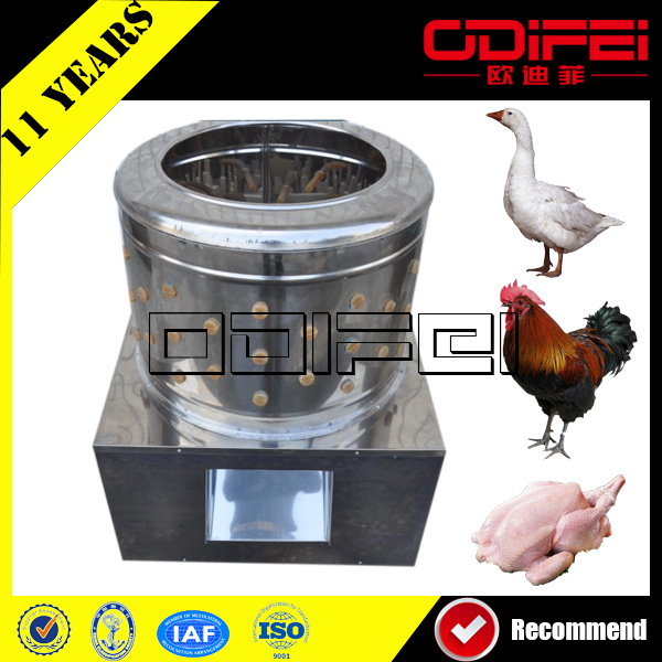 Small scale high quality kill cones for turkey chicken/Stainless Steel Killing Cone