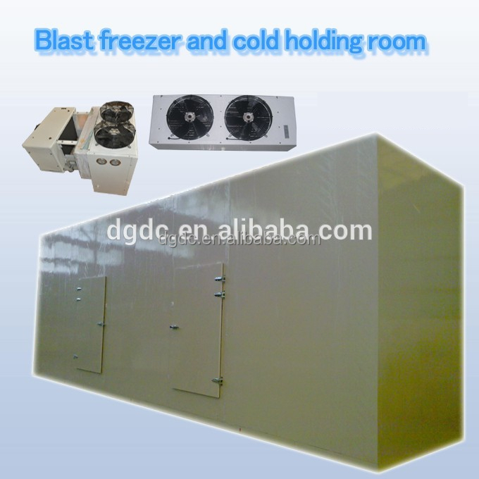 Quick freezing blast freezer and cold holding room for frozen chicken