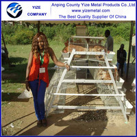 chicken layer battery cage/chick cage for chicken coop /Battery Type Breeding Chicken Cage