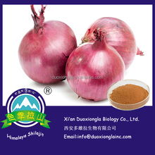 Onion extract / dehydrated onion powder / onion powder with best quality