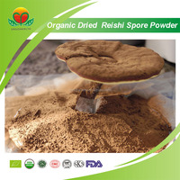 Competitive Price Organic Dried Reishi Spore