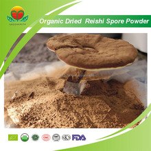 Competitive Price Organic Dried Reishi Spore Powder
